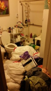 Hoarding Cleanup - before