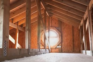 How to Remove Mold From Attic Plywood | ServiceMaster