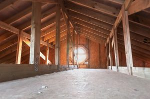 remove mold from attic plywood